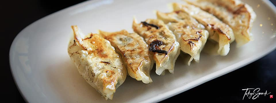 Pan seared Japanese dumpling